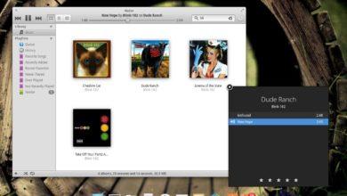 Bild von Link: Linux mit Mac-Optik für jeden PC