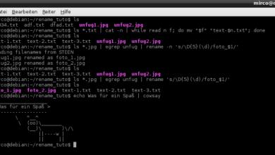 Bild von Anleitung: Dateien massenhaft im Linux-Terminal umbenennen
