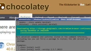Bild von Anleitung: Windows-Paketmanager – 2.332 Programme gratis