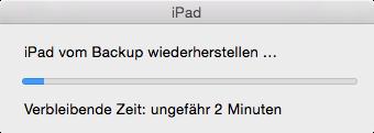 iPadUmzug5