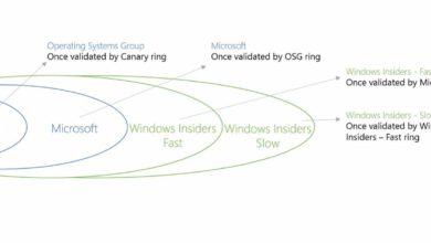 Bild von Neue Versionen der Windows 10-Vorschau schneller erhalten