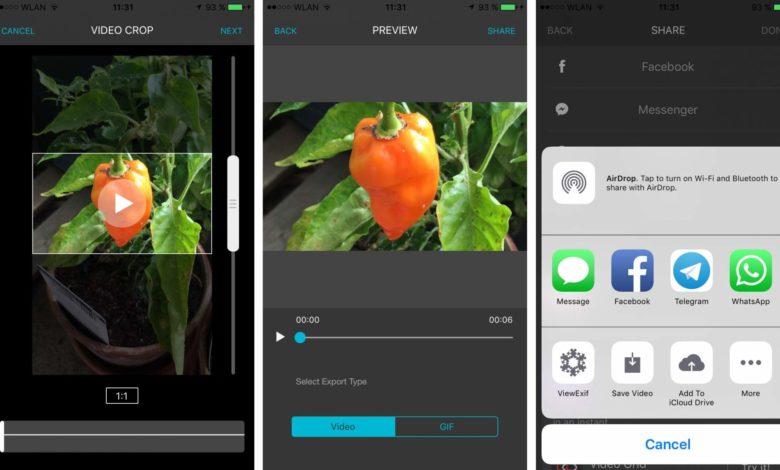 Video öffnen, Ausschnitt wählen, abspeichern – einfacher geht es kaum!
