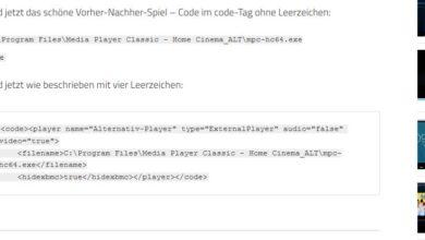Bild von Code in Wordpress korrekt darstellen