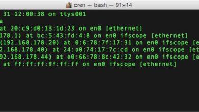 Bild von Geräte im WLAN aufspüren und ihre IP-Adresse herausfinden