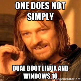 One does simply dual boot linux and windows 10