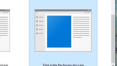 Bild von Dateierweiterung im Windows Explorer anzeigen und Sicherheit erhöhen