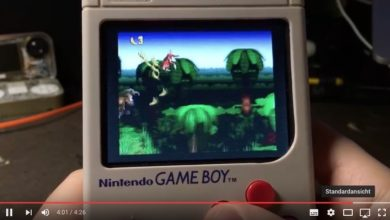 Bild von Der Raspberry-Pi-Gameboy mit echtem Gehäuse