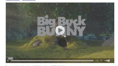 Bild von Autoplay von HTML5 Video in Chrome und Firefox blocken