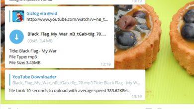 Bild von Anleitung: YouTube-Clips als Video/Audio herunterladen – mit Telegram!