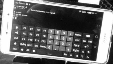 Bild von Stündlich Sprichwörter vorlesen lassen – unter Android, im Terminal