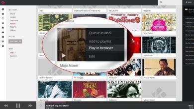 Bild von Kodi 17 komplett im Browser nutzen