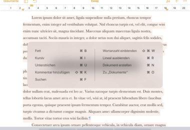 Effektiver arbeiten mit Keybord-Shortcuts.