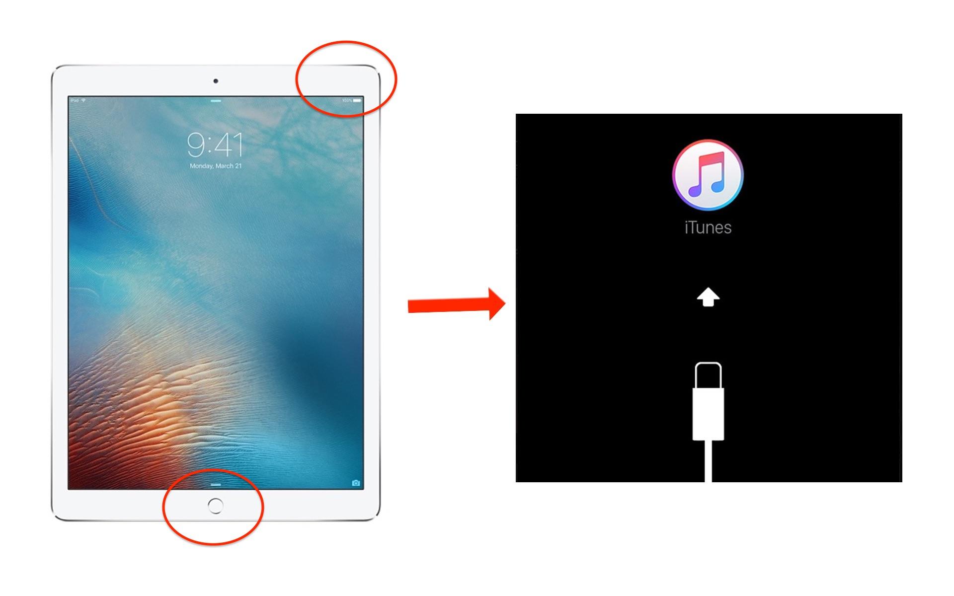 Home- und Einschaltknopf gleichzeitig gedrückt halten, bis der Bildschirm den Wartungsmodus zeigt.