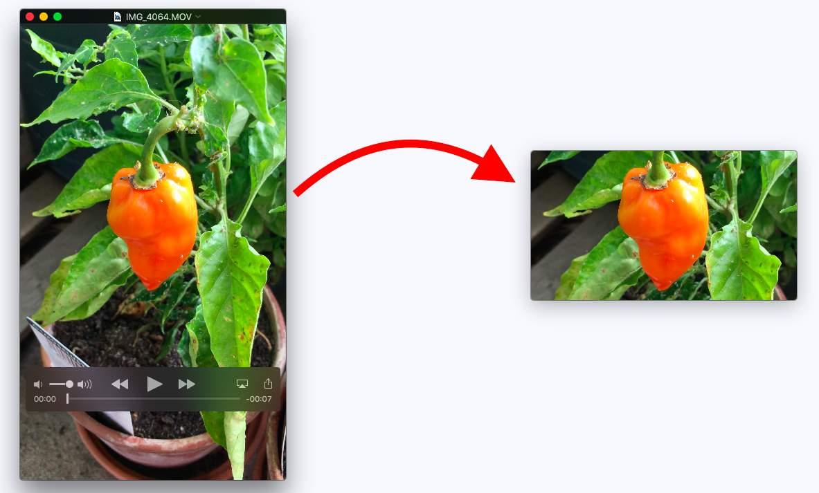 Vertikale Videos können durch Beschneiden horizontal gemacht werden.
