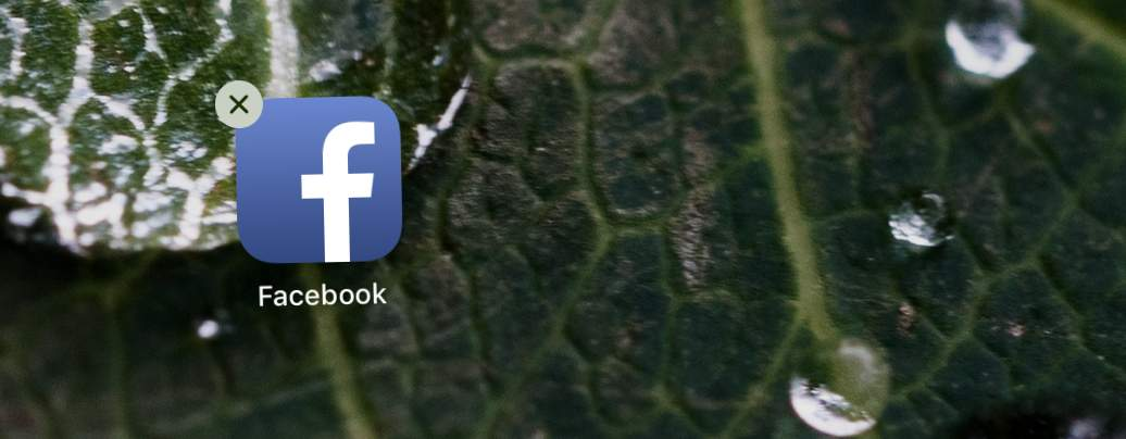 Geh' zum Teufel, Facebook-App!