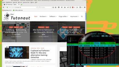 Bild von Browser verursacht starke CPU-Last? Eine Lösung.