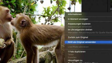 Photo of Anleitung: RAW-Dateien aus Apple Fotos entfernen