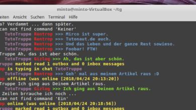 Bild von Anleitung: Telegram-Terminal-Client installieren und nutzen