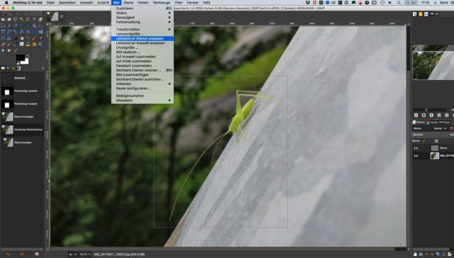 Gimp 2.10 für den Mac