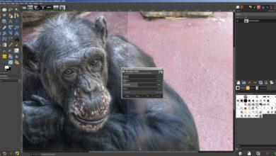 Bild von Gimp 2.10: Neue Features im Bild. Plus: Beta-Tools freischalten