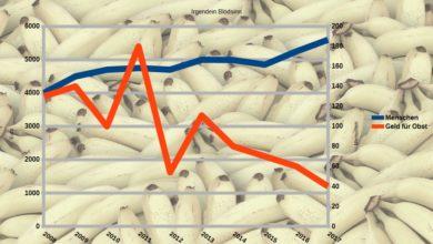 Bild von Anleitung: Diagramme mit zwei Y-Achsen/Wertebereichen
