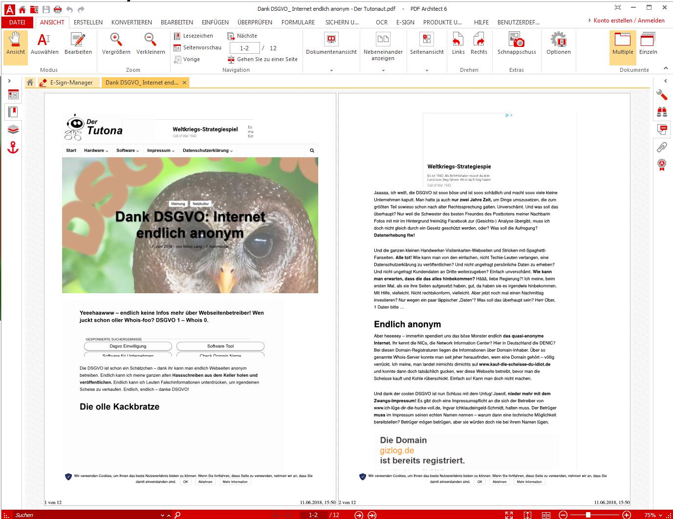 website pdf