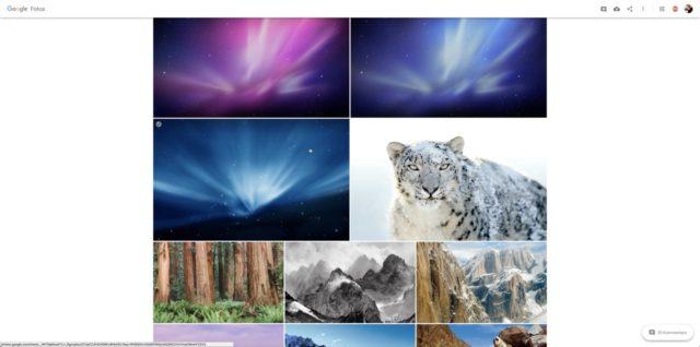 Apple Snow Leopard Wallpaper (Quelle: Apple)