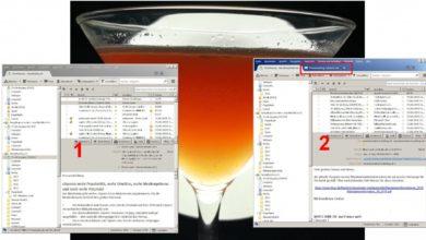 Bild von Anleitung: Doppeltes Thunderbird-Fenster loswerden