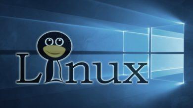 Linux Windows 10