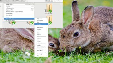 rabbitvcs titelbild