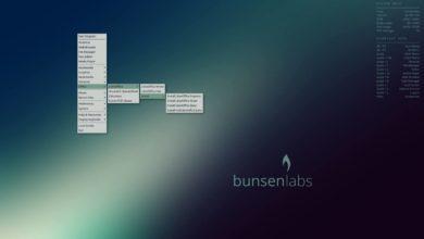 Bild von Linux-Quartett – Distri-Impressionen 31: BunsenLabs Linux