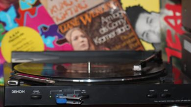 Bild von Anleitung: Schallplatten mit Audacity digitalisieren – Teil 1