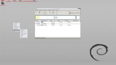 Bild von Linux-Quartett – Distri-Impressionen 21: Gparted Live