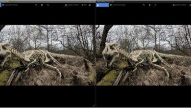 Bild von Anleitung: Fotos effizient verkleinern (Teil 1: Einzelne Bilder)
