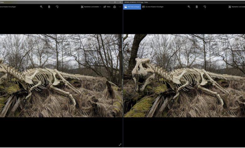 Bild Vergleich