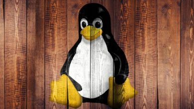 Bild von Anleitung: Debian-Linux auf MyCloud installieren