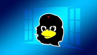 Bild von Linux-Festplatten mit EXT4 unter Windows formatieren