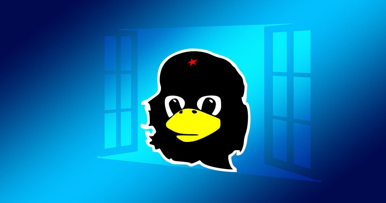 Linux unter Windows (Bild: geralt/OpenClipartVectors/Pixabay)