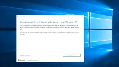 Windows 10 Upgrade Mai 2019 manuell installieren