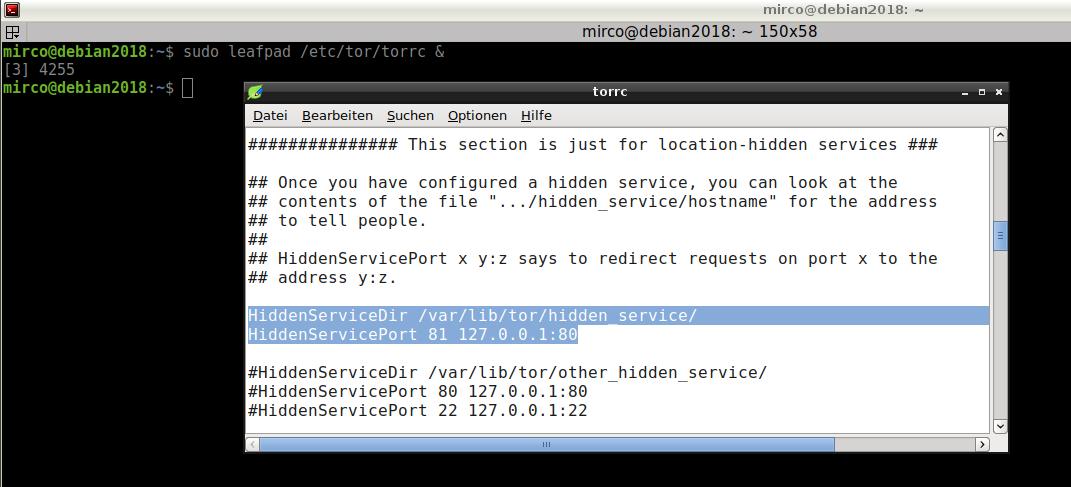 tor hidden service config