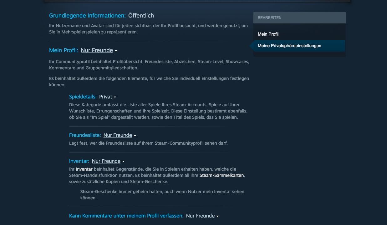 War meinem sehen steam profil auf wer Steam Profilauszeichnungen?