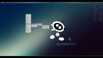 Bild von Feature Picking: Hilfe von Bunsenlabs (S02E03)
