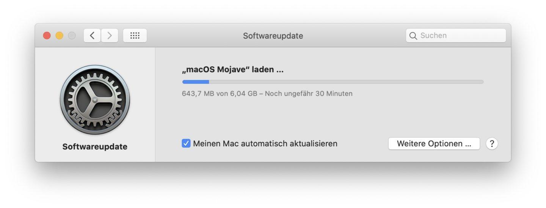Die Datei landet über den Updater im Programme-Ordner.