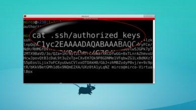Bild von SSH ohne Passwörter nutzen (Ubuntu)