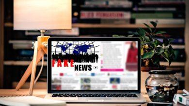 Bild von Faktencheck selber machen und Fake-News erkennen