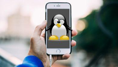 Linux auf dem iPhone? Kein Problem! (Bilder: OpenClipart-Vectors/Pixabay, Pexels/Pixabay)