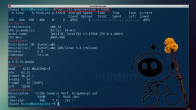 Bild von cli.help-Beta: Skripte direkt aus dem Netz ausführen