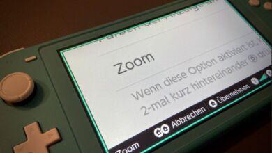 Nintendo Switch Zoom aktivieren