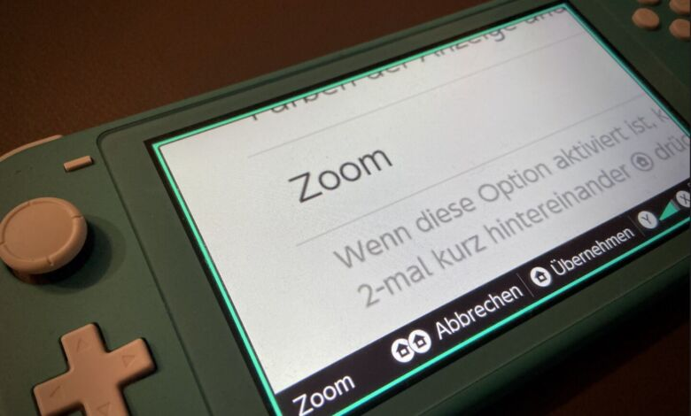 Nintendo Switch Zoom aktivieren