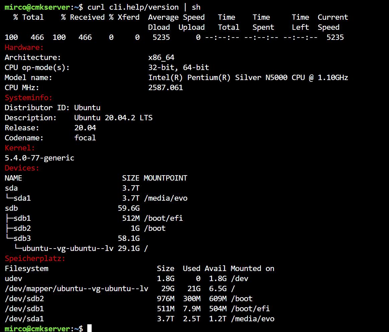 systeminformationen im terminal.